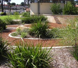 2012 Boronia Inspection view of the First Peoples' Garden