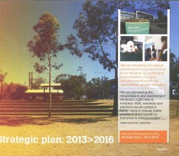 Wandoo strategic plan cover