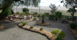 Image of the Noongar outdoor cultural area