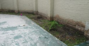 Denuded garden bed in protection wing