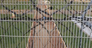 Image of prison grounds through fence at Casuarina Prison