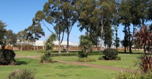 Image of large trees in grounds of Casuarina Prison